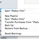 sync and backup from iTunes